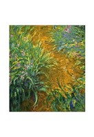 "The Path in the Iris Garden by Claude Monet - 13"" x 19"""