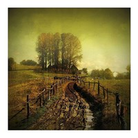 Another Place Fine Art Print