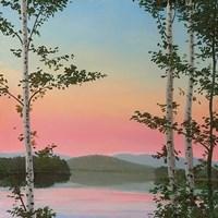 Cooper Sunset Birches Fine Art Print