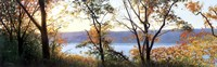 "Autumn Scrim by Elissa Gore - 38"" x 12"""