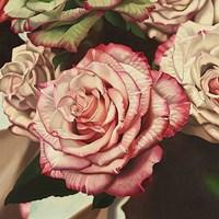 "Vintage Rose by Elizabeth Hellman - 12"" x 12"""
