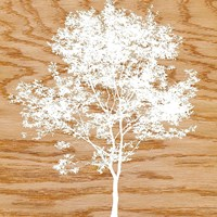 "Snowy Tree by Erin Clark - 12"" x 12"""