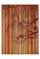 Amber Stripe Framed Print