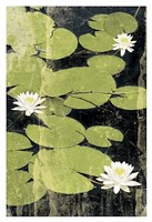 """Pond Blossoms by Erin Clark - 13"""" x 19"""""""