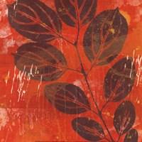 Exotic Vine Fine Art Print