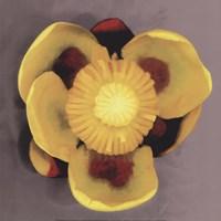 "Waterlily by Erin Clark - 12"" x 12"""