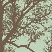 "Winter Tree IV by Erin Clark - 12"" x 12"""