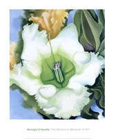 Cup of Silver Ginger, 1939 Fine Art Print