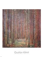 Tannenwald I by Gustav Klimt - various sizes