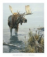 Silent Waters Fine Art Print
