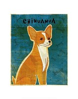"""Chihuahua (red) by John W. Golden - 11"""" x 14"""""""