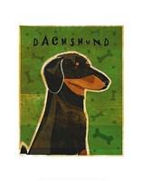 "Dachshund (black and tan) by John W. Golden - 11"" x 14"""