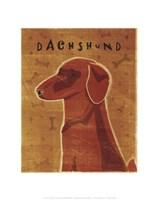 Dachshund (red) Framed Print