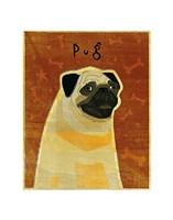 """Pug by John W. Golden - 11"""" x 14"""" - $10.99"""