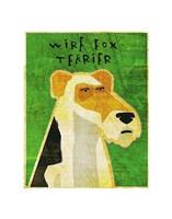 """Wire Fox Terrier by John W. Golden - 11"""" x 14"""""""