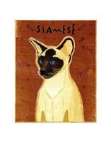 "Siamese by John W. Golden - 11"" x 14"""