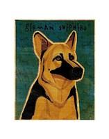 """German Shepherd by John W. Golden - 11"""" x 14"""""""