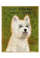 "West Highland White Terrier by John W. Golden - 13"" x 19"""