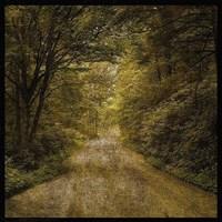 Flannery Fork Road No. 1 Fine Art Print