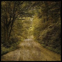 """Flannery Fork Road No. 1 by John W. Golden - 12"""" x 12"""" - $12.99"""