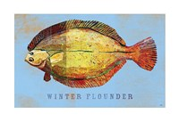 Winter Flounder Framed Print