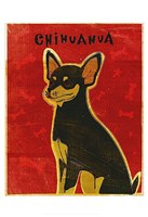 """13"""" x 19"""" Chihuahua Pictures"""