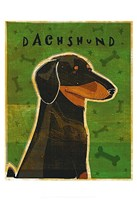 Dachshund (black and tan) Fine Art Print