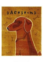 Dachshund (red) Fine Art Print