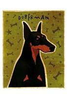 "Doberman by John W. Golden - 13"" x 19"""