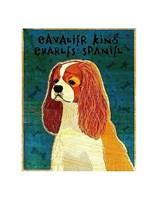 """Cavalier King Charles (Blenheim) by John W. Golden - 11"""" x 14"""""""