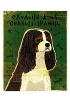 """Cavalier King Charles (tri-color) by John W. Golden - 13"""" x 19"""", FulcrumGallery.com brand"""