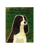 """Cavalier King Charles (tri-color) by John W. Golden - 11"""" x 14"""""""
