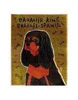 """Cavalier King Charles (black and tan) by John W. Golden - 11"""" x 14"""""""