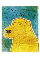 "Lab (yellow) by John W. Golden - 13"" x 19"""
