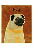 """Pug by John W. Golden - 13"""" x 19"""" - $12.99"""