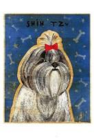 """Shih Tzu by John W. Golden - 13"""" x 19"""""""
