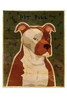 "Pit Bull by John W. Golden - 13"" x 19"""