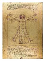 Vitruvian Man Fine Art Print