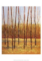 Tall Trees II (right) Fine Art Print