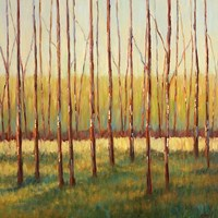 Grove of Trees Fine Art Print