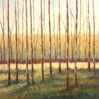"""Grove of Trees by Libby Smart - 20"""" x 20"""" - $18.99"""