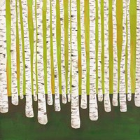 "12"" x 12"" Birch Decors"