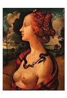 Portrait of Simonetta Vespucci,  c. 1480 Fine Art Print