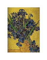 Irises in Vase Fine Art Print