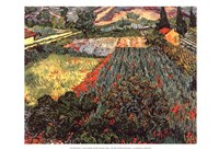 Field of Poppies, Saint-Remy, c. 1889 Framed Print