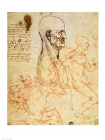 Torso of a Man in Profile, the Head Squared for Proportion by Leonardo Da Vinci - various sizes