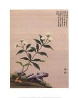 """Flowering Chinese Tree III by Linda Stubbs - 16"""" x 20"""""""