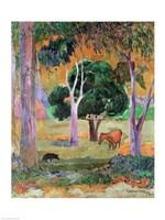Dominican Landscape Fine Art Print