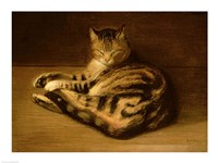 Recumbent Cat, 1898 Fine Art Print
