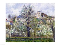 The Vegetable Garden with Trees in Blossom, Spring, Pontoise, 1877 Fine Art Print